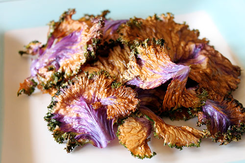 Homemade Kale Chips Recipe