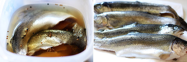 Brine Recipe for Fish