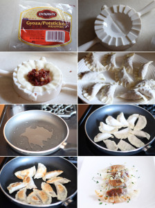 Ingredients for making a pot sticker recipe